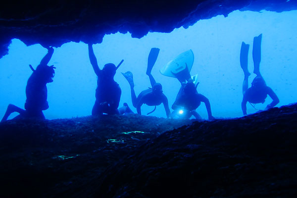 Marine Reserve of the Island of Toro 4